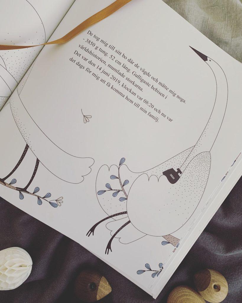 Personlig barnbok När storken kom med mig Personlig present Dopgåva Doppresent Namngivningspresent Födelseuppgifter